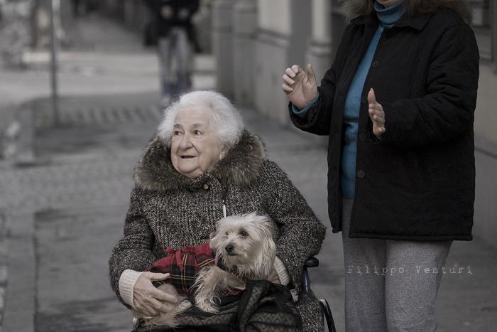 Il Re oggi gira. Voi no? (Via Giorgio Regnoli, Forlì) Associazione Casa del Cuculo - Foto 23
