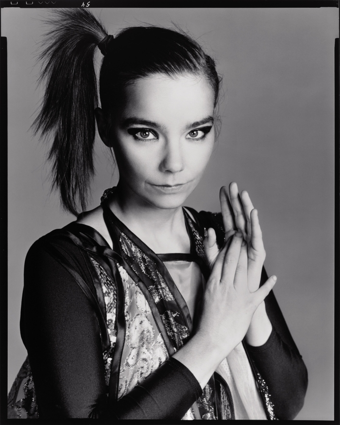 Richard Avedon - Bjork
