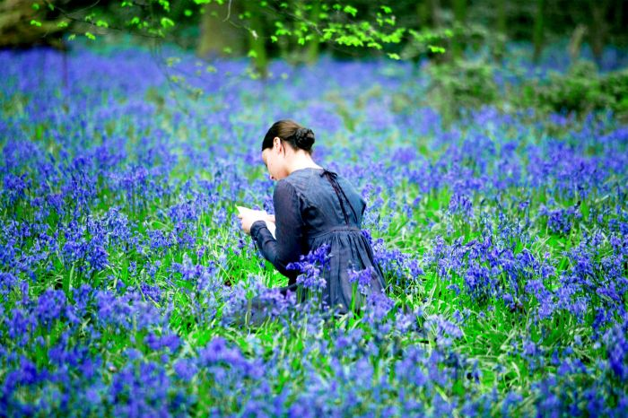 Bright Star di Jane Campion (foto 1)