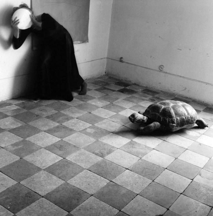 Mostra di Francesca Woodman a Milano, Palazzo della Ragione (foto 8)