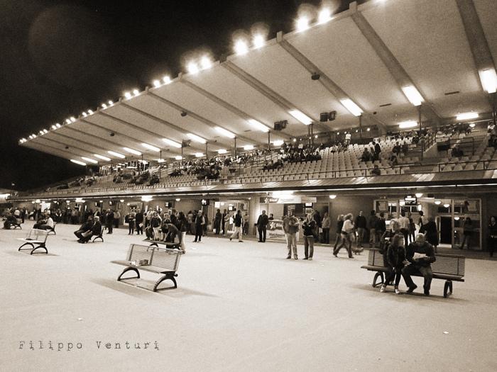 Azzeccare i cavalli vincenti (foto 1)