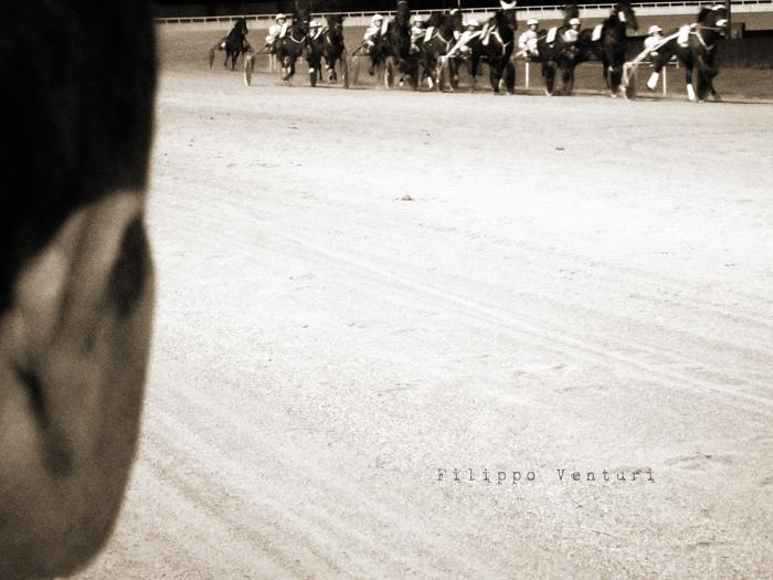Azzeccare i cavalli vincenti (foto 2)