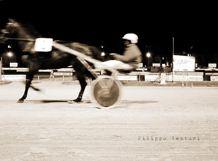 Azzeccare i cavalli vincenti (foto 3)