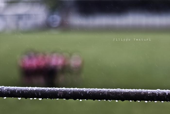 """XVI edizione del Torneo Memorial """"Sanzio Togni"""" - Foto 1"""