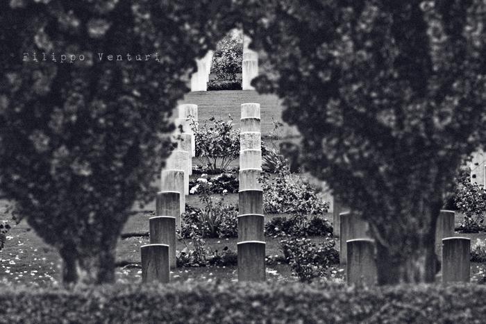 Il giardino di pietra