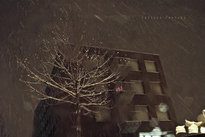 Cesena, 23 Dicembre 2010 - Foto 6