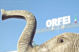 Sit-in contro il Circo con animali