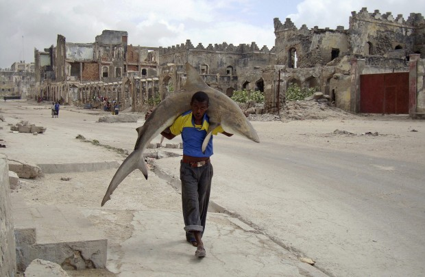 Daily Life: 1st prize singles. Omar Feisal, Somalia, for Reuters. Man carries a shark through the streets of Mogadishu, Somalia, 23 September