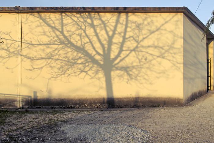 Il silenzio del crepuscolo (foto 1)