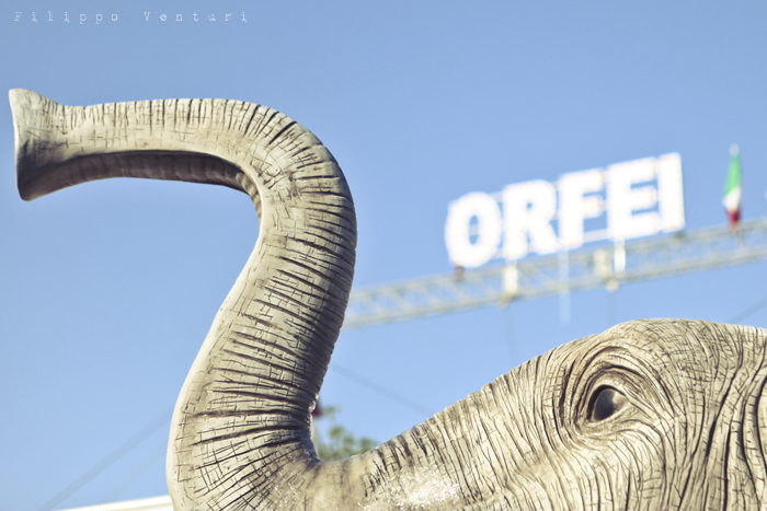LAV Forlì Cesena, Sit-in contro il Circo con animali (foto 1)