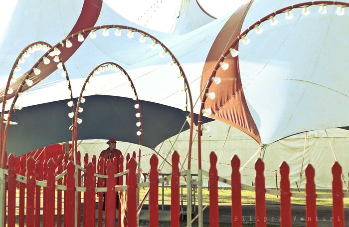 LAV Forlì Cesena, Sit-in contro il Circo con animali (foto 5)