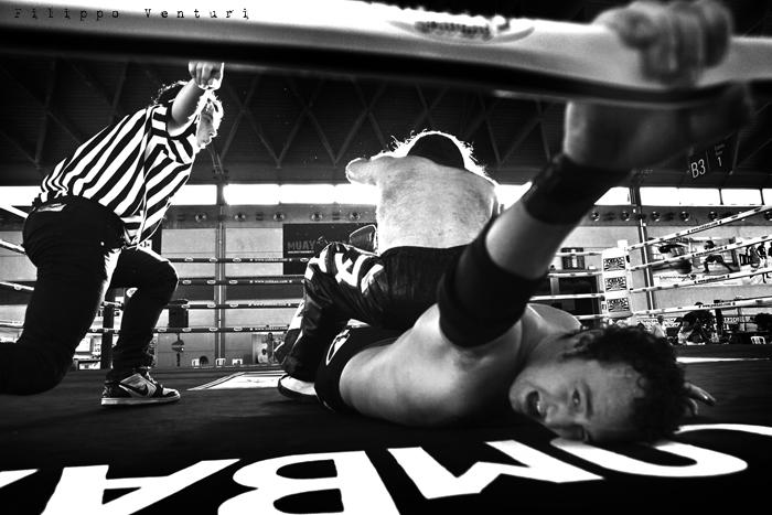 Wrestling (photo 17)