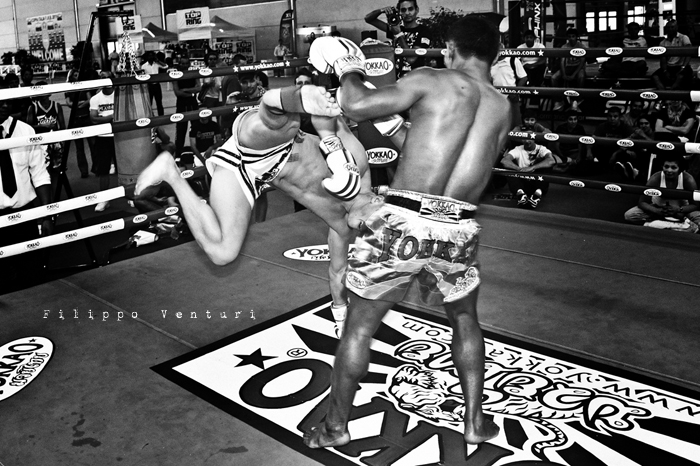 Yokkao Thai Boxing (Rimini Wellness) photo 3