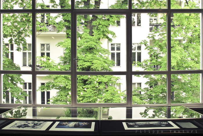 Berlin days (4), photo 8