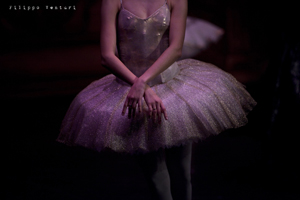 Sleeping Beauty, Moscow Ballet