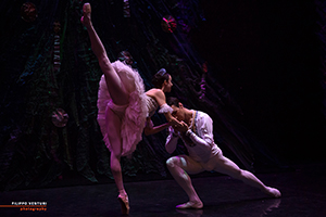 The Nutcracker, Moscow Ballet