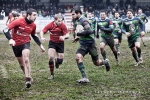 Romagna Rugby - CUS Verona Rugby, photo 14