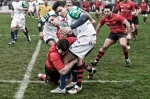 Romagna Rugby VS Modena Rugby, photo 17