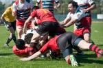 Romagna Rugby VS Rubano Rugby, photo 33