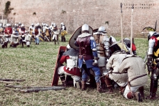A.D. 1387 - Battaglia di Terra del Sole, foto 35