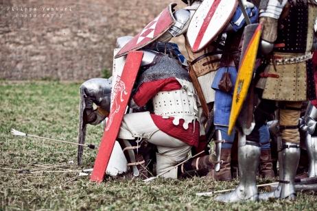 A.D. 1387 - Battaglia di Terra del Sole, foto 45