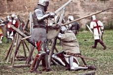 A.D. 1387 - Battaglia di Terra del Sole, foto 51