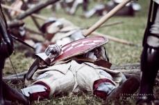 A.D. 1387 - Battaglia di Terra del Sole, foto 52