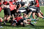 Romagna Rugby - L'Aquila Rugby, foto 11