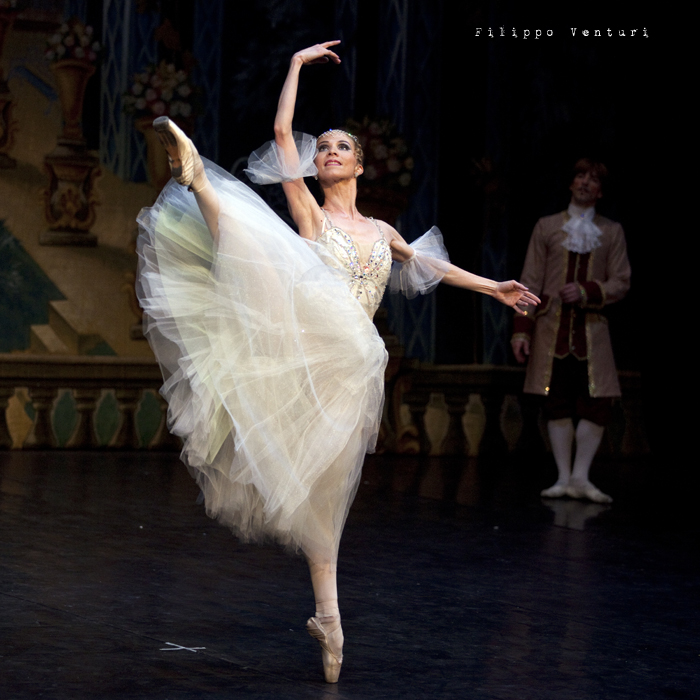 New Classical Ballet of Moscow, Cinderella, photo 19