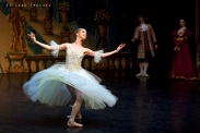 New Classical Ballet of Moscow, Cinderella, photo 20