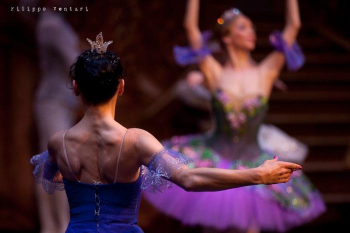 Balletto di Mosca, La bella addormentata, foto 3