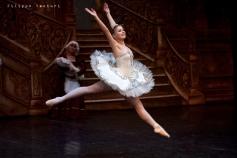 Balletto di Mosca, La bella addormentata, foto 8