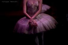 Balletto di Mosca, La bella addormentata, foto 12