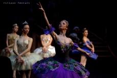 Balletto di Mosca, La bella addormentata, foto 17