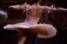 Balletto di Mosca, La bella addormentata, foto 20