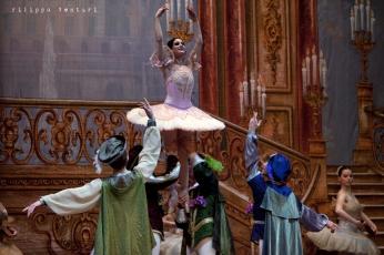 Balletto di Mosca, La bella addormentata, foto 21