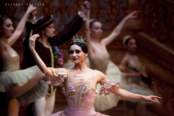 Balletto di Mosca, La bella addormentata, foto 22