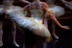 Balletto di Mosca, La bella addormentata, foto 24