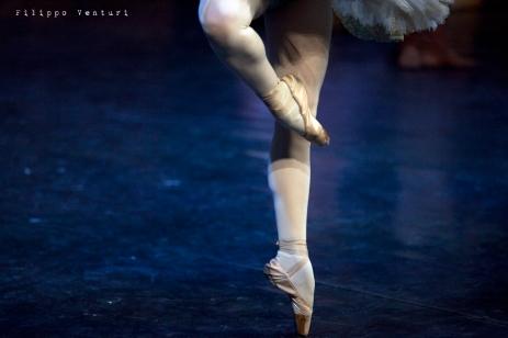 Balletto di Mosca, La bella addormentata, foto 25