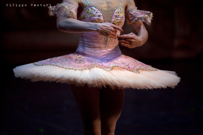 Balletto di Mosca, La bella addormentata, foto 26