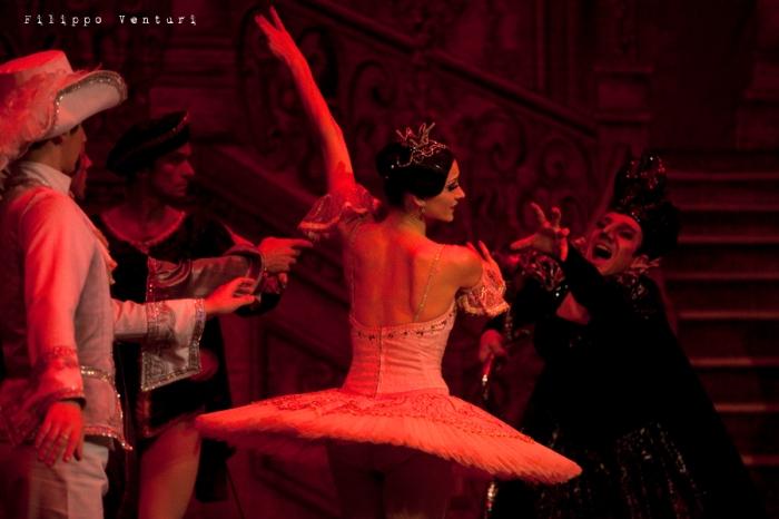 Balletto di Mosca, La bella addormentata, foto 30