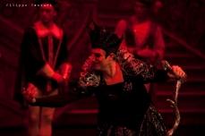 Balletto di Mosca, La bella addormentata, foto 31