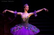 Balletto di Mosca, La bella addormentata, foto 34