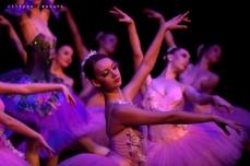 Balletto di Mosca, La bella addormentata, foto 38