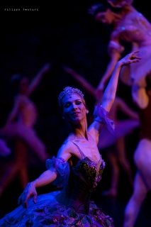 Balletto di Mosca, La bella addormentata, foto 42