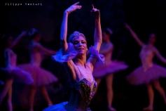 Balletto di Mosca, La bella addormentata, foto 43