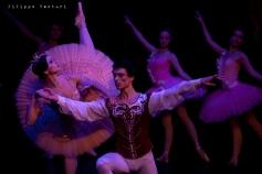 Balletto di Mosca, La bella addormentata, foto 44