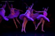 Balletto di Mosca, La bella addormentata, foto 45