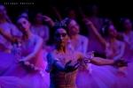 Balletto di Mosca, La bella addormentata, foto 49