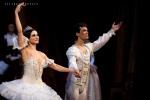 Balletto di Mosca, La bella addormentata, foto 60